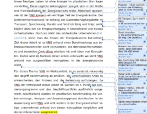 Lektorat einer Hausarbeit ueber die VNG AG Leipzig